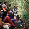 Джунглите на Борнео - приключение в гора на 130 милиона години