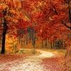 Есенни посоки: 5 дестинации в България за дъжд и слънце