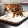 Разгледай виртуално: зоопаркове и аквариуми с камери на живо