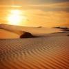 Екскурзия в пустинята: Шест горещи пясъчни дестинации