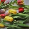8 почивки, които са подарък за 8 март