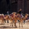 Йордания: Приключение от 1001 нощ, събрано в 5 дни