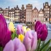5 от най-зелените градове в Европа
