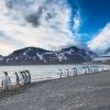 Фолклендските острови: накрай света за среща с пингвините